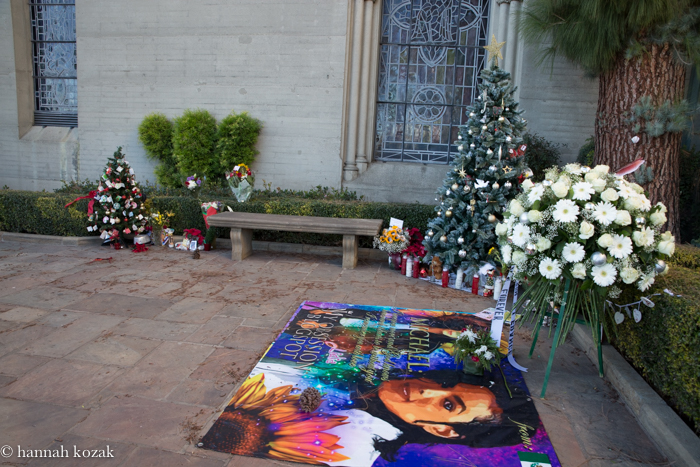 Forest Lawn for MJ