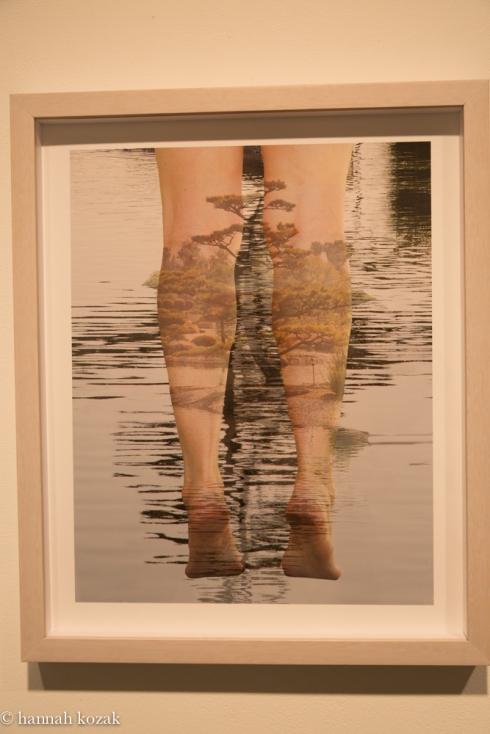 Sandra Klein:  Tea Garden Archival pigment print 2014