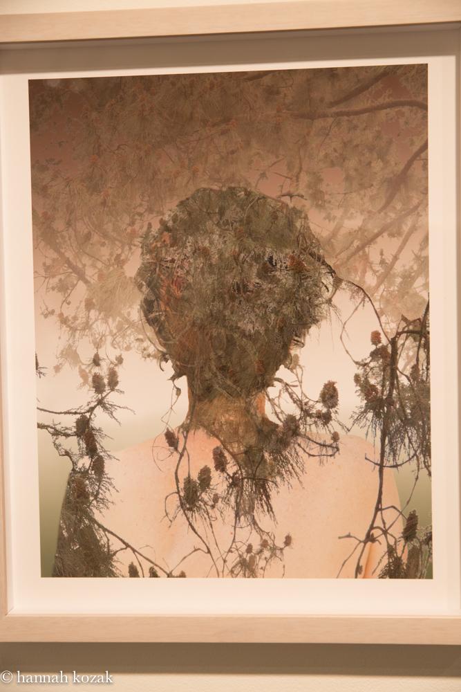 Sandra Klein:  Shimmer Archival Pigment Print 2014