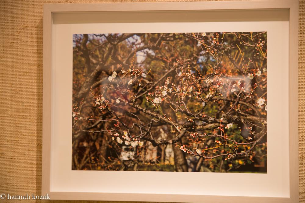 Sandra Klein: Early Spring Archival Pigment Print 2014