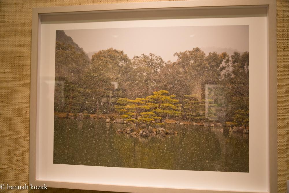 Sandra Klein:  Green Island Archival Pigment Print 2014